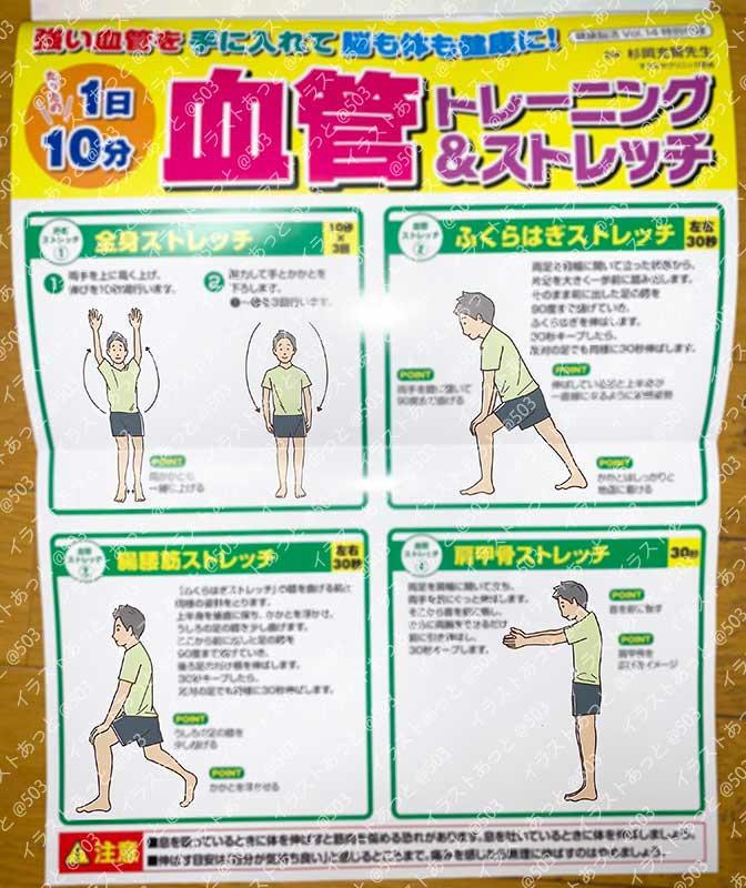 血管トレーニング